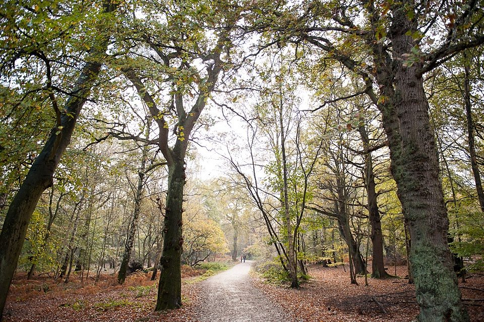 Autumnal Engagement Shoot In Epping Forest